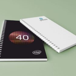 Notebooks_Intel+Picara
