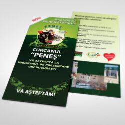 flyer_penes